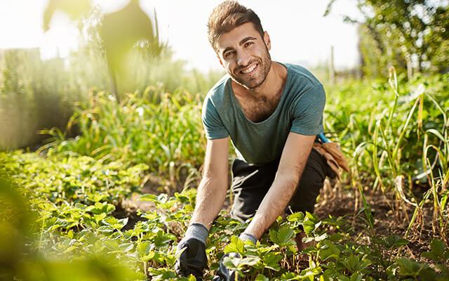 Munkásnadrág kerti munkákra